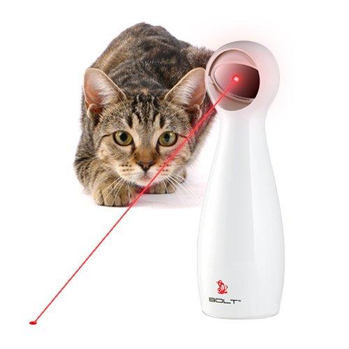 chat-laser-automatique